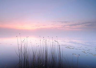 Lake Print by Keller
