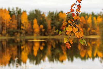 Lake Reflections Of Fall Foliage  Print by Aldona Pivoriene