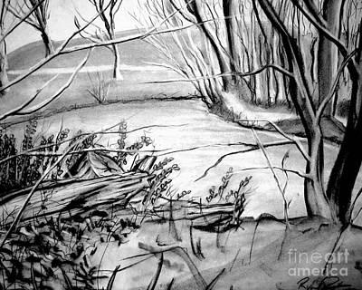 Charcoal Landscape Drawings Drawing - Lake by Ryan Burton