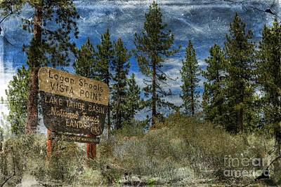 Lake Tahoe National Forest Print by Benanne Stiens