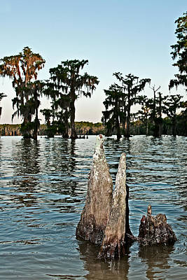 Louisiana Photograph - Lake Verret On Lake Verret by Andy Crawford