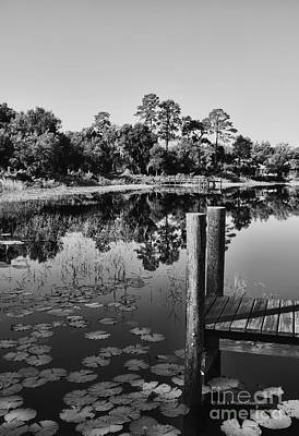 Lilly Pads Photograph - Lakes Of Deland by Deborah Benoit
