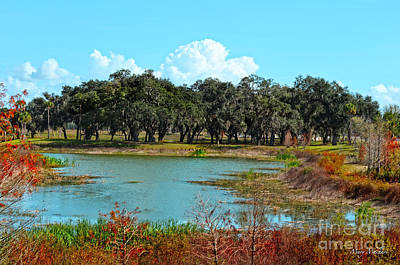 Ocala Photograph - Lakeside In Sumter County by Mary Machare