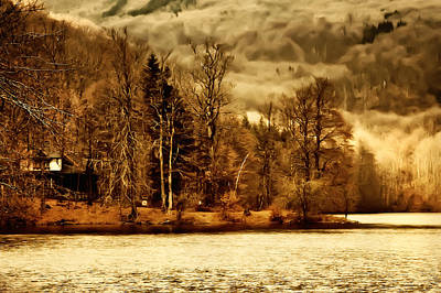 Tree Photograph - Lakeside Log Cabin by Roman Solar