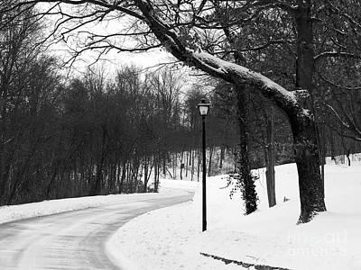 Curving Road Photograph - Lamp-light Lane by Mel Steinhauer