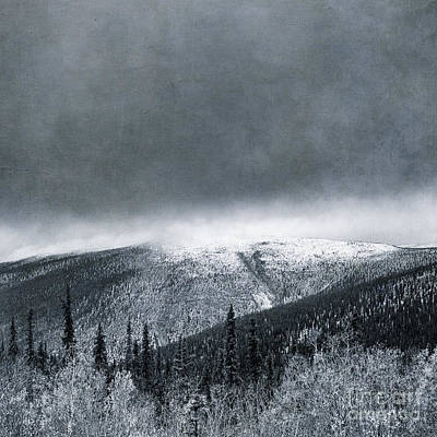 Wintry Landscape Photograph - Land Shapes 3 by Priska Wettstein