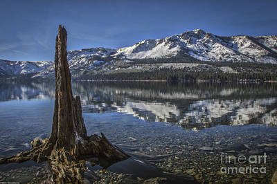 Fallen Leaf On Water Photograph - Landmarks by Mitch Shindelbower
