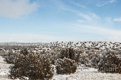 Bleak Desert Digital Art - Landscape 18 K Los Alamos Nm by Otri Park