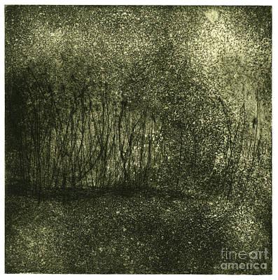 Mystical Landscape - Plants -reed - Botany - Biotope - Habitat - Etching - Fine Art Print - Stock Image Print by Urft Valley Art
