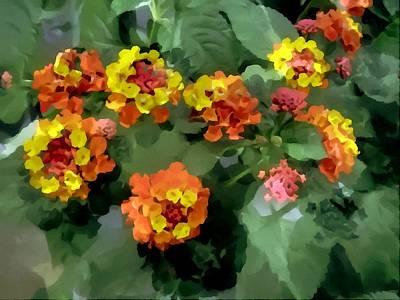 Verbena Painting - Lantana  Flowers by Lanjee Chee