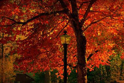 Autumn Scene Photograph - Lantern In Autumn by Susanne Van Hulst