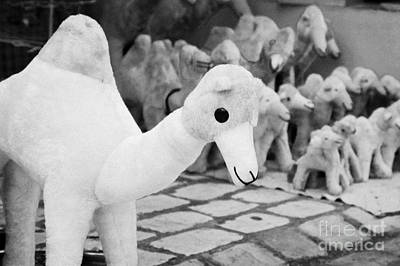 Toy Shop Photograph - Large Soft Toy Stuffed Camel Souvenir At Market Stall In Nabeul Tunisia by Joe Fox