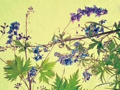 Floral Photograph - Larkspur by Priska Wettstein