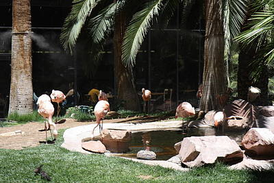 Las Vegas - Flamingo Casino - 12127 Print by DC Photographer