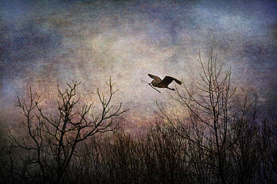Waterfowl Digital Art - Last Delivery Of The Day by Dale Kincaid