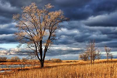 Late Afternoon At Walnut Creek Lake #2 Print by Nikolyn McDonald