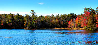 Late Autumn At Loon Lake Print by David Patterson