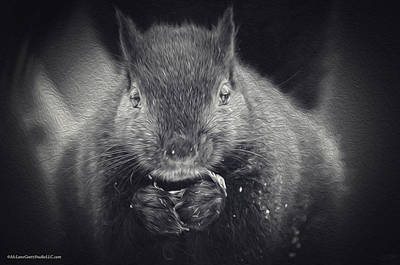 Late Night Squirrel Snack Print by LeeAnn McLaneGoetz McLaneGoetzStudioLLCcom