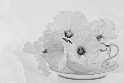 Flower Still Life Photograph - Lavatera Flowers In Tea Cup - Still Life by Sandra Foster