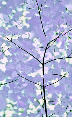 Lavender Blues Leaves Melody Print by Jennie Marie Schell