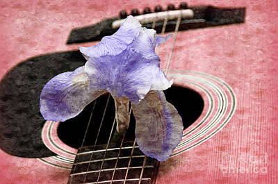 Bridge Photograph - Lavender Iris And Acoustic Guitar - Texture - Music - Musical Instrument - Painterly - Pink  by Andee Design