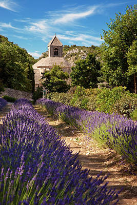 Lavender Leading To The Historic Abbaye Print by Brian Jannsen