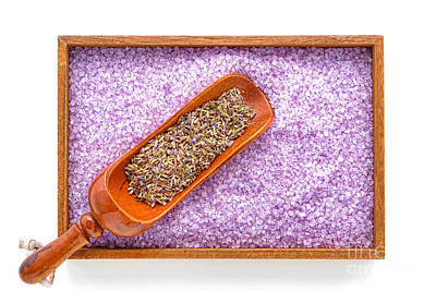 Lavender Seeds And Bath Salts Print by Olivier Le Queinec