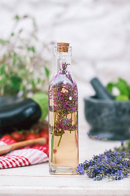Lavender Vinegar Print by Viktor Pravdica