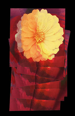 Layers Of Yellow Flower Print by Susan Stone