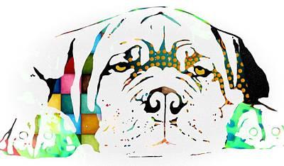 Dogs Digital Art - Lazy Dog With Color by Cindy Edwards