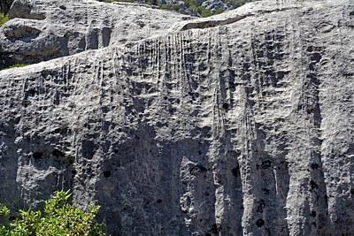 Leached Limestone Print by Dirk Wiersma