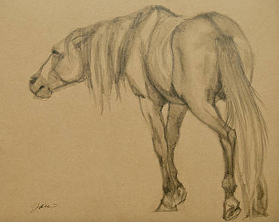 Wild Horses Drawing - Lead Stallion by Jani Freimann