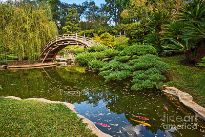 Bridges Photograph - Lead The Way - The Beautiful Japanese Gardens At The Huntington Library With Koi Swimming. by Jamie Pham