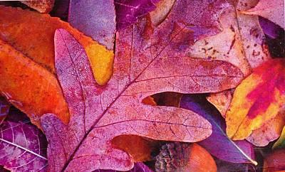 Leaves Print by Anne-Elizabeth Whiteway