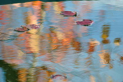 Leaves Real And Reflected Print by Frozen in Time Fine Art Photography
