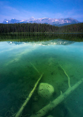 Canadian Rockies Photograph - Leech Lake by Cale Best