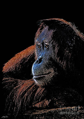 Orangutan Mixed Media - Legacy - Orangutan by Skye Ryan-Evans