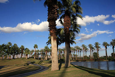 Palm Desert Photograph - Leisure by Laurie Search