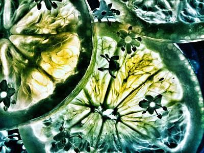 Lemon And Elderflower  Print by Marianna Mills