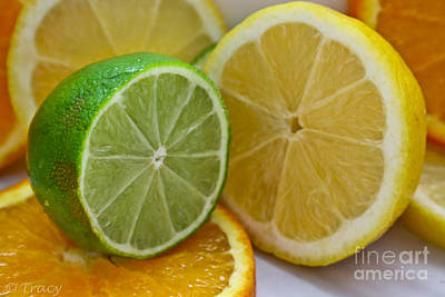 Lemon Lime And Orange Original by Tracy  Hall