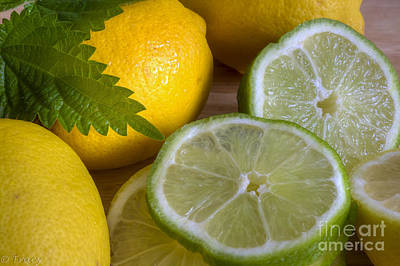 Lemons And Limes Original by Tracy  Hall