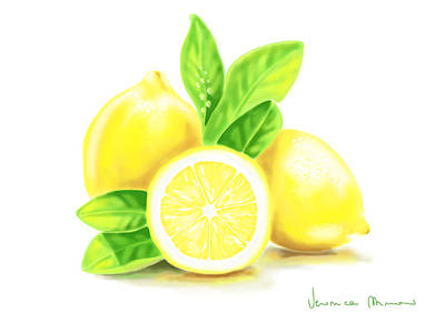 Citrus Painting - Lemons by Veronica Minozzi