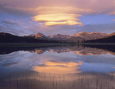 Mammoth Photograph - Lenticular Clouds Over Mount Dana by Tim Fitzharris