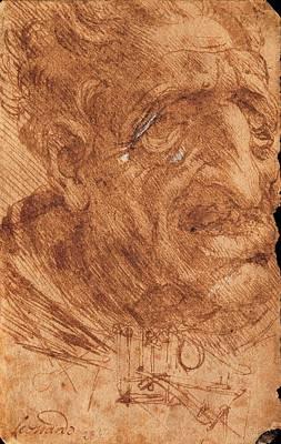 Watercolor With Pen Photograph - Leonardo Da Vinci, Head Of An Old Man by Everett