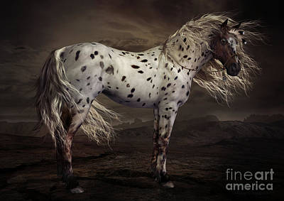 Horse Art Digital Art - Leopard Appalossa by Shanina Conway
