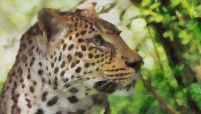 Leopard Mixed Media - Leopard In The Wild by Dan Sproul