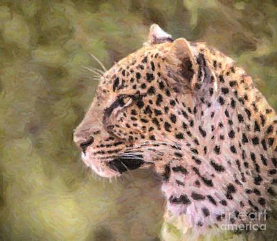 Leopard Digital Art - Leopard Portrait by Liz Leyden