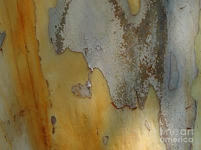 Leopard Tree Bark Abstract No.3 Print by Denise Clark