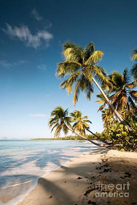 Caribbean Photograph - Les Salines Beach II by Matteo Colombo