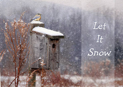Bluebird Digital Art - Let It Snow - Bluebirds by Lori Deiter